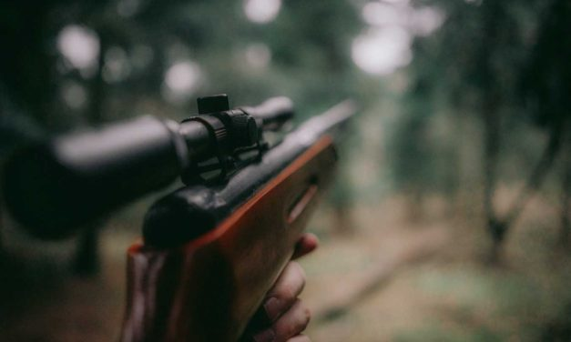 The Ethics of Writing about Gun Ownership